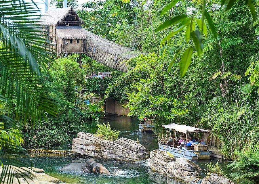 Rimbula in Wildlands Adventure Zoo