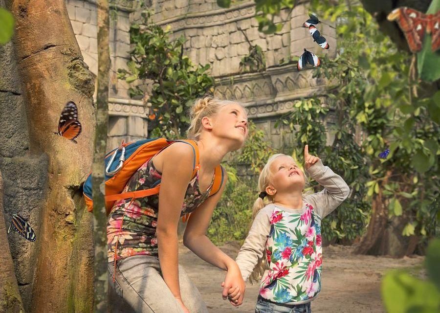 De Vlindertempel in Jungola in Wildlands Adventure Zoo